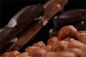 チョコレート・カカオ卸売業
